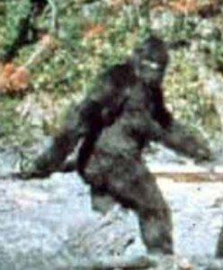 Is Bigfoot Real Or Fake