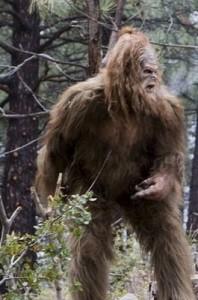 bigfoot-calls