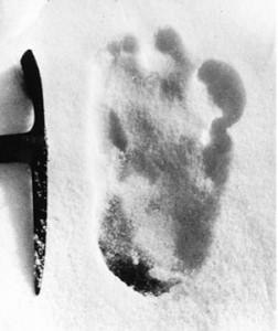 Yeti-Snowman-footprints